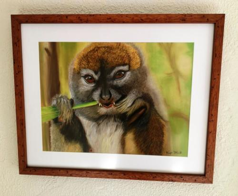 The Bamboo lemur